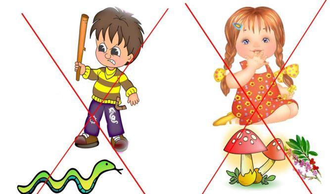 Картинки по запросу правила поведения детей в лесу беларусь